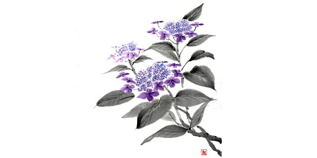 "Sumi-e  Ink Painting Workshop Part 8: ""Coloured Hydrangea"" with Akemi Lucas tickets"