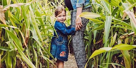 JC Farming's Summer Maize Maze tickets