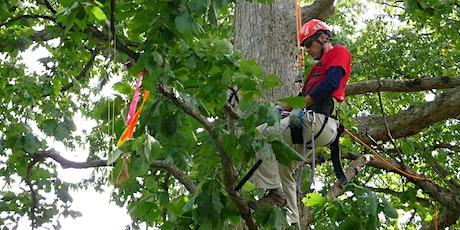 2021 Indiana Arborist Association Tree Climbing Championship tickets