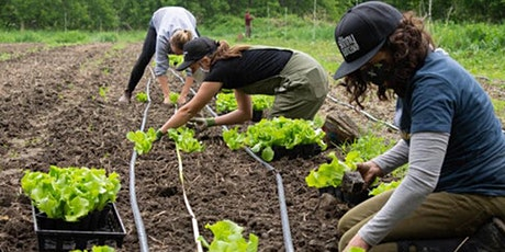 Crop Mob at the People's Farm tickets
