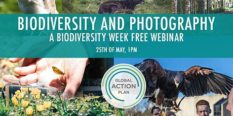 Biodiversity and Photography - A free Biodiversity Week webinar tickets