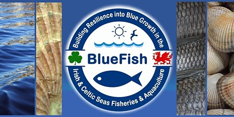 BlueFish Conference - Dynamic Seas - Ein Moroedd Dynamig tickets