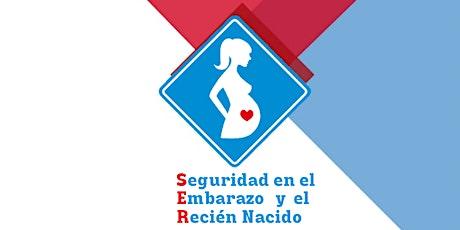 Jornada S.E.R. - Seguridad en el Embarazo y el Recién Nacido entradas