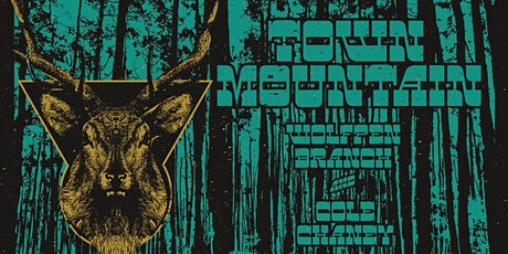 Town Mountain w/ Wolfpen Branch and Cole Chaney tickets