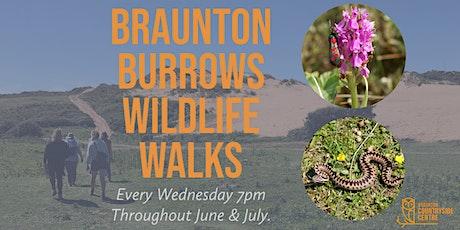 Braunton Burrows Wildlife Walk tickets