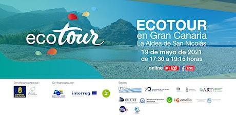"""Jornadas online """"ECOTOUR en Gran Canaria. La Aldea de San Nicolás"""" entradas"""