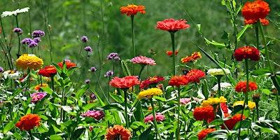 Keep Your Garden Humming