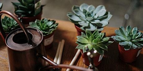 Green Thumbs: Succulent Design tickets