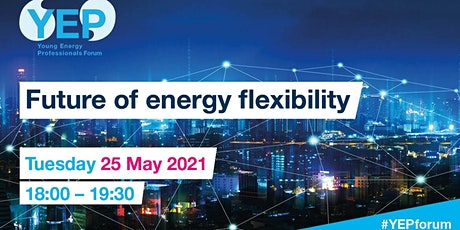 Future of Energy Flexibility tickets