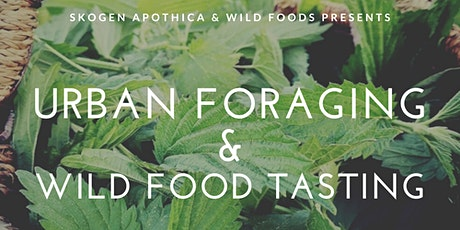 Urban Foraging Workshop & Wild Food Tasting tickets