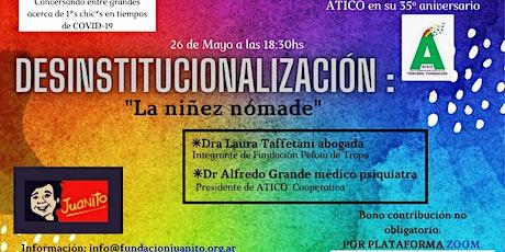 Desinstitucionalización entradas