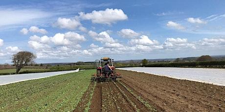 North Yorks Organic Farm Walk - Soil Association Certification tickets