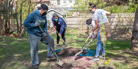 Community Tree Planting with One Tree Planted: Norwalk, Connecticut tickets
