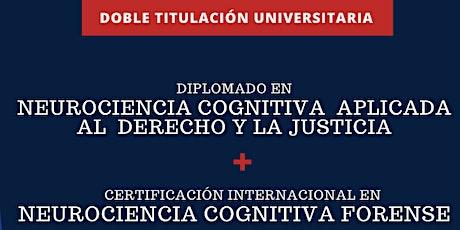 Diplomatura en Neurociencia Cognitiva Aplicada al Derecho y la Justicia entradas