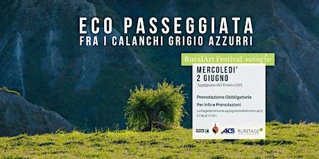 ECO PASSEGGIATA FRA I CALANCHI GRIGIO AZZURRI biglietti
