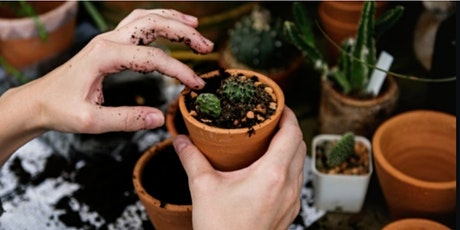 Free Beginners Workshop to Happy House Plants: How to Care for Indoor Plant tickets
