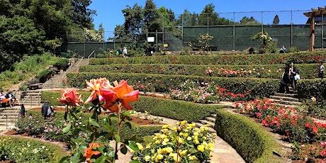 Rose Garden Tour and Brunch [Berkeley] tickets