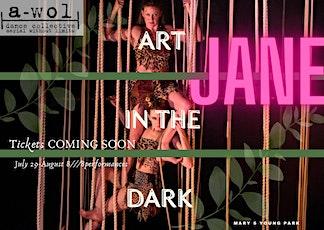 Art in the Dark: 2021 SHOW BEGINS AT DARK Saturday August 7, 2021 tickets