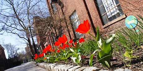 Books and Blooms!: The RED Bookshelf and The Discover Albany Visitor Center tickets