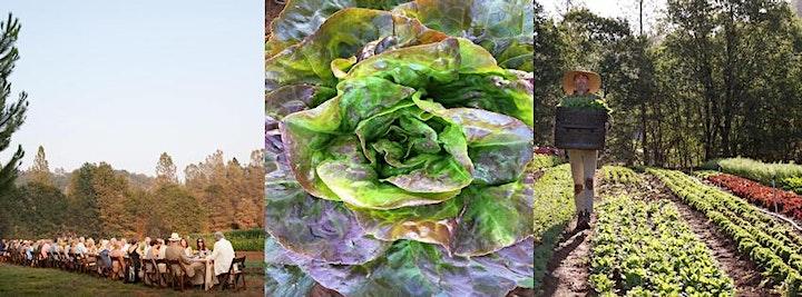 Organic Farm Open House and Farm Tour - Stone's Throw Farm, CA image