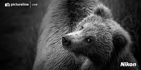 Photographing American Wildlife with Kristi Odom tickets