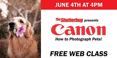 Canon | How to Photograph your Pet tickets