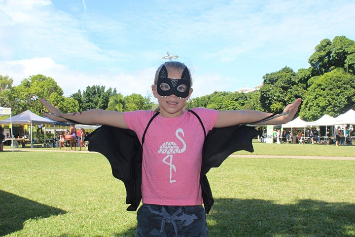 Cairns Bat Festival: Gala Event and Launch of Flying-fox watch project image