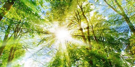 June 1st - Midday Divine Mother Healing tickets