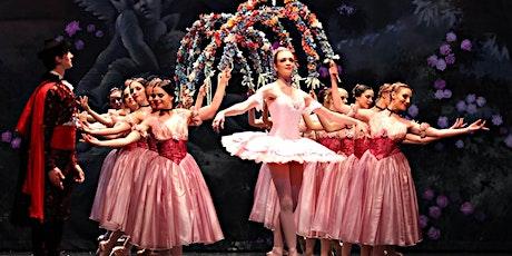 FREE Sequin Dress(Value$48.95 )12 Wks Class Sleeping Beauty Perform $188.00 tickets