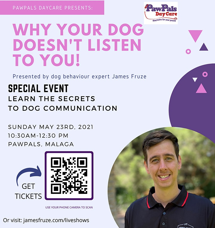 Why your dog doesn't listen to you! image