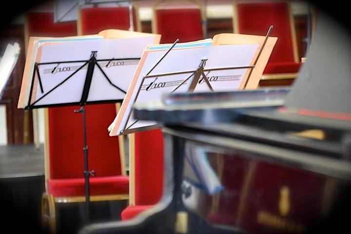 Leamington Chamber Orchestra Midsummer Music Festival image