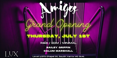 AMIGOS LAUNCH PARTY @ LUX –A Party With Amigos! tickets