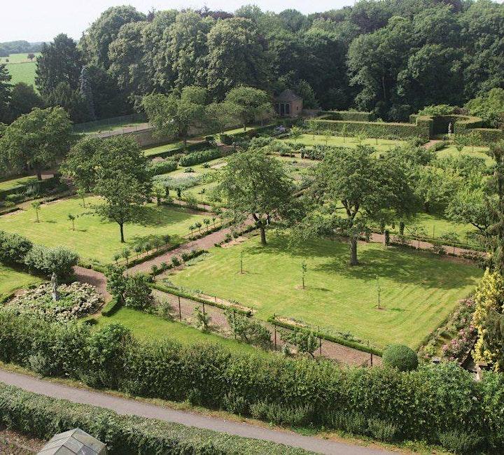 Image pour Spectacle au château fort et balade des plantes comestibles sauvages