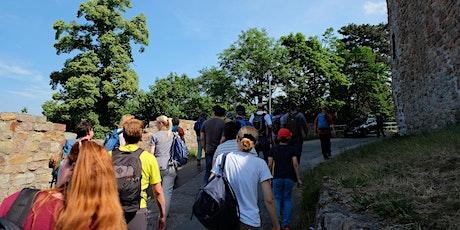 Mo,24.05.21 Wanderdate Buddhas Panoramaweg im Odenwald für 40-65J Tickets