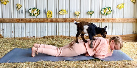 Family Goat Yoga and Play tickets