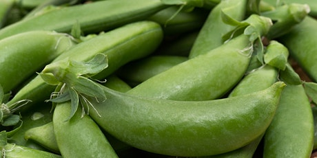 Cooking Demo:  Delicious  Recipes with Fresh Snap Peas! tickets