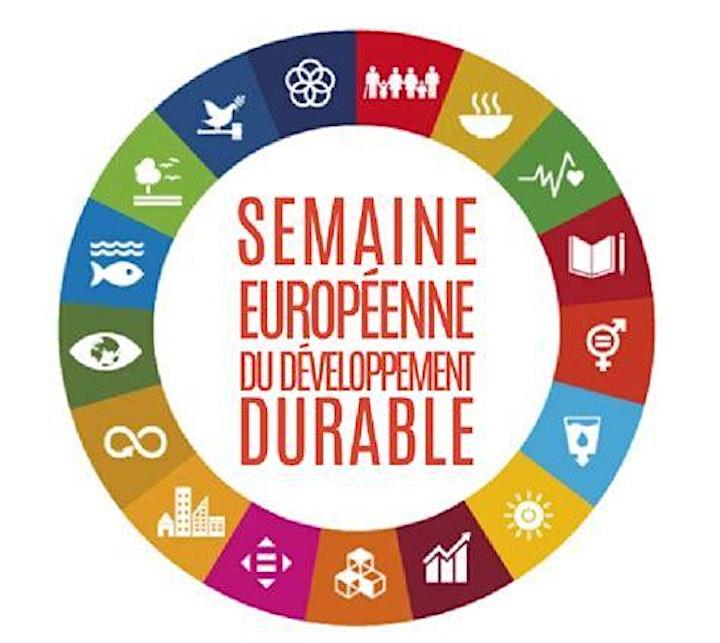 Image pour Développement Durable : Les fondamentaux