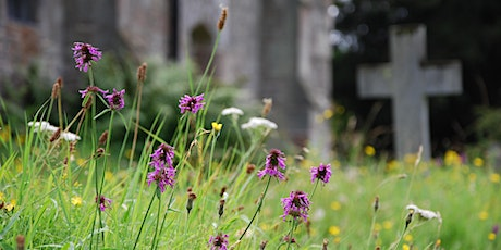 The Potential of Churchyards for  Wildlife - Ulverston tickets