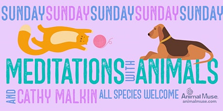 Sunday Meditations with Animals -- June 20, 2021 tickets