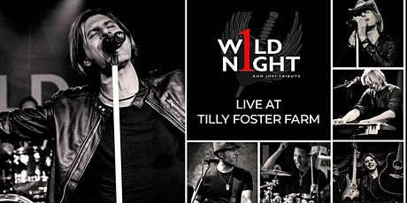 1 Wild Night LIVE at Tilly's Table tickets