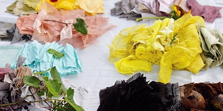 Botanical Dyeing using Native Plants with Sasha Duerr tickets
