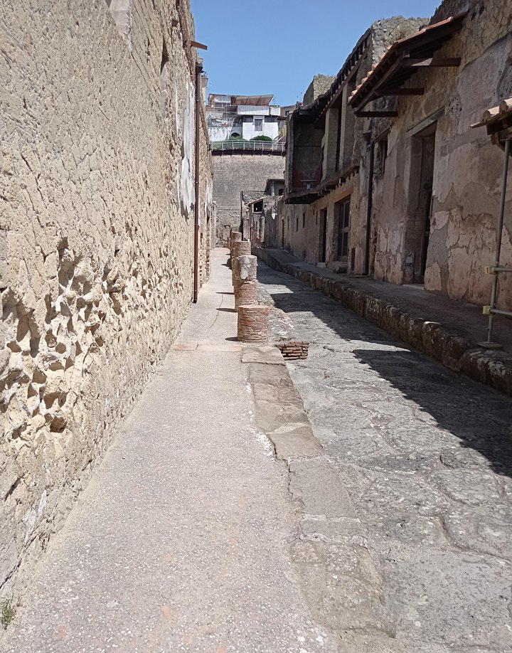 Immagine Visita guidata agli scavi archeologici di Ercolano