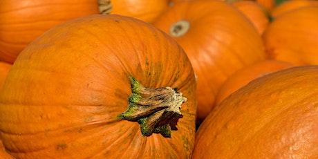 Summer Vegetable Series: Pumpkins tickets