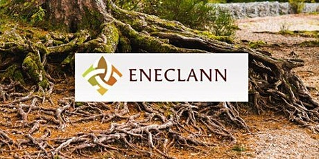 Family History and Genealogy with Fiona Fitzsimons of Eneclann tickets