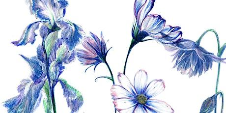 Botanical Drawing Class tickets