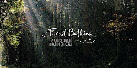 ForEst Experience - tra boschi e torbiere (Altopiano Curiedi) biglietti
