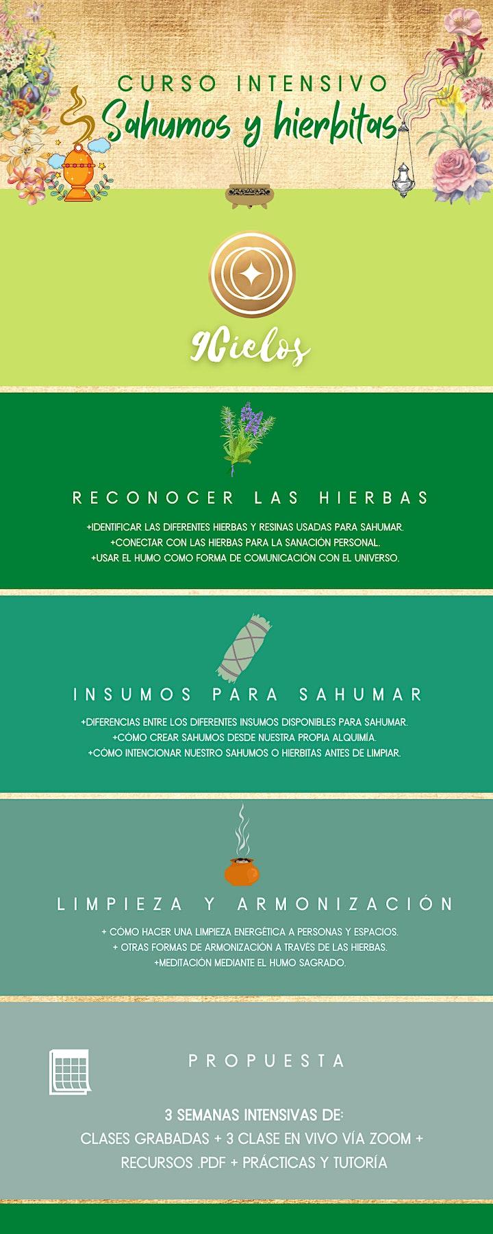 Imagen de Curso Intensivo de SAHUMOS Y HIERBITAS