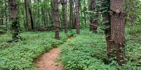 Story Walk on the Trails of Mount Lebanon tickets