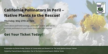 California Pollinators in Peril – Native Plants to the Rescue! tickets