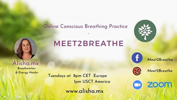 Meet2Breathe Online image